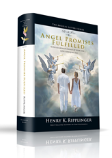 Angel Promises Fulfilled, 3D view